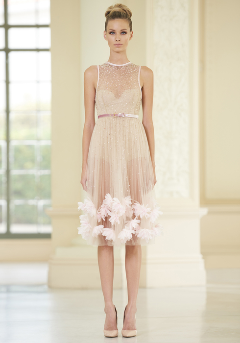 Embroidered Tulle mididress